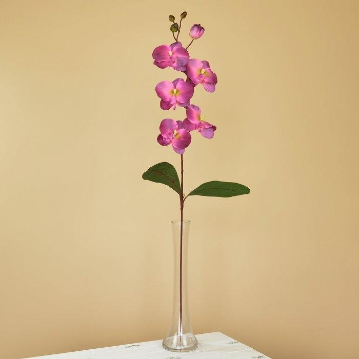 Ветка орхидеи темно-сиреневая