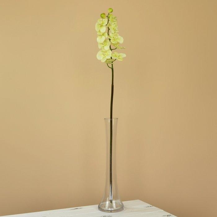 Ветка орхидея мелкая салатовая